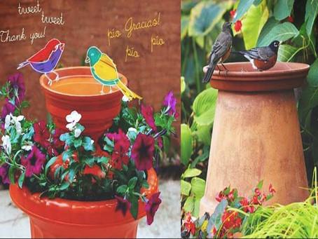 Design a Garden Spa for the Birds !