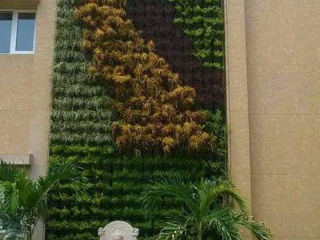 CREATING A BEAUTIFUL GREEN WALL IS AS SIMPLE AS 1-2-3