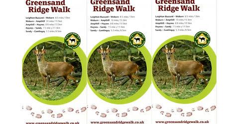 Greensand Ridgewalk Challenge