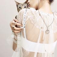 T&C Cats 1773623f3 copy.jpg