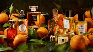 CL-Orange-Pefumes-3300.jpg