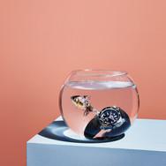 ESQUIRE-fishbowls-S5-v2-FGHP.jpg