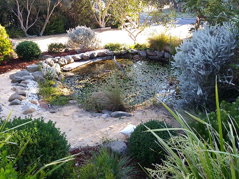 Frog pond 18 Lyell St. Mittagong NSW 257