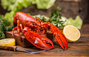 Cooked lobster on wooden background.jpg