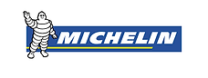 Michelin Tyres - Flavin Consulting