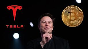 Тесла инвестировала полтора миллиарда долларов в биткоин
