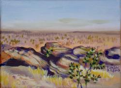 Les falaises Bandiagara 1