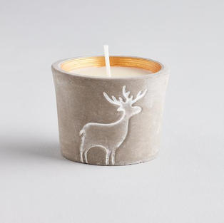 reindeer orange and cinnamon candle