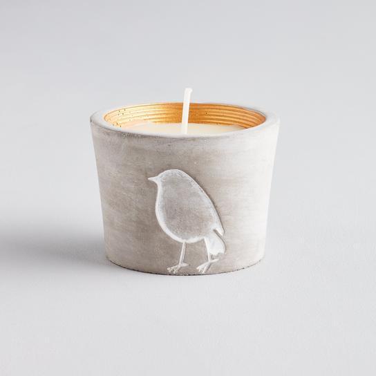Inspiritus robin candle