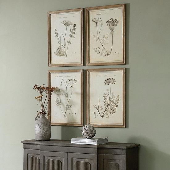 Botanical framed wall art