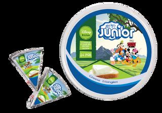 Junior Triangle Cheese