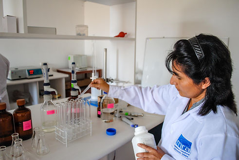 Análisis Químico - Laboratorio, Chorri