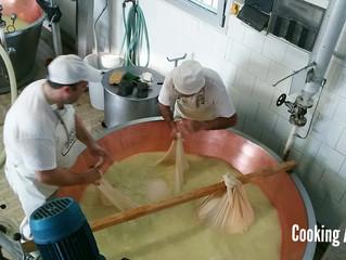 มาดูโรงงานทำชีส#ParmigianoReggiano
