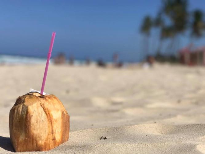 The Last Coconut in Cuba