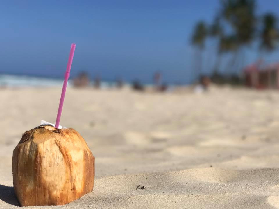 The Last Coconut in Cuba