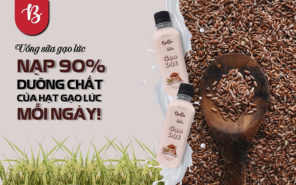 Sữa gạo lứt nguồn gốc từ Nhật Bản