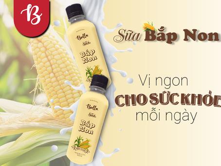 Lợi ích của sữa bắp với sức khỏe, uống sữa bắp mỗi ngày tốt không?