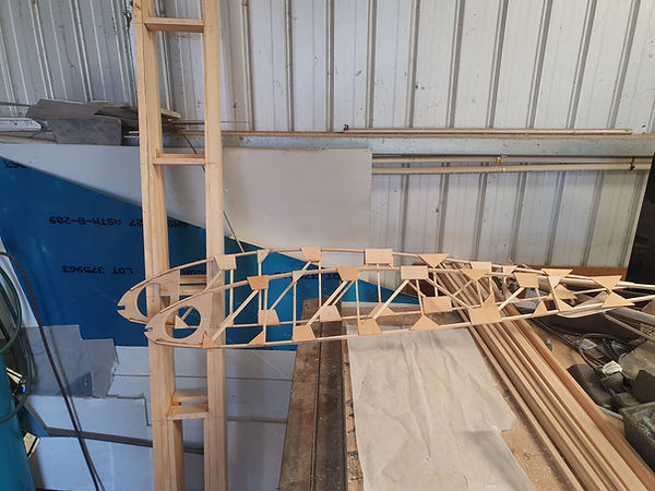 Wing ribs and basic outer panel spars