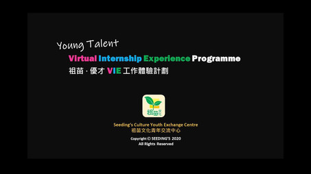 Young Talent VIE - Summer 2020