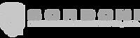 Sordoni-Logo_edited_edited.png