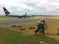 Turf at Dublin Airport