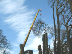 Large Crane Services Available