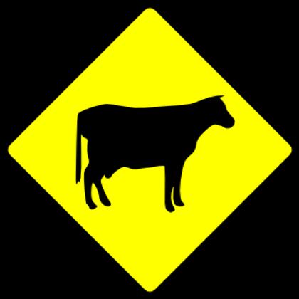Cows Danger Sign
