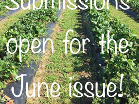 Submit submit submit!