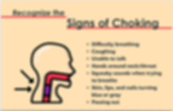"Handout screenshot: ""Recognize the Signs of Choking"" with 7 signs to know"