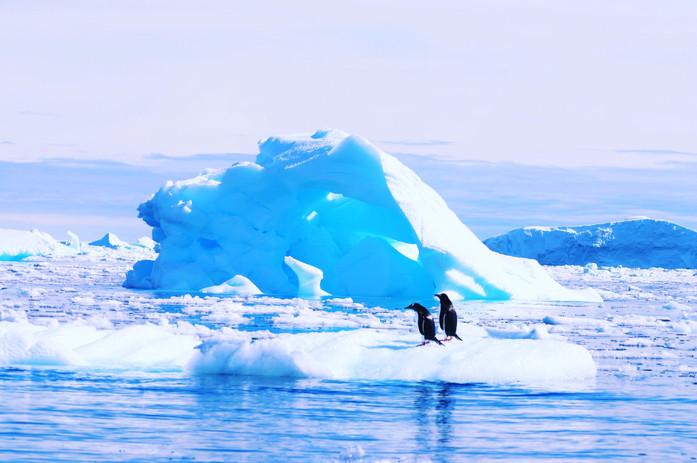 Antarctica 2 T.JPG