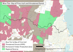Bay of Fires threatened forests