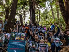 Blue Derby Wild takes public behind logging buffer PR spin