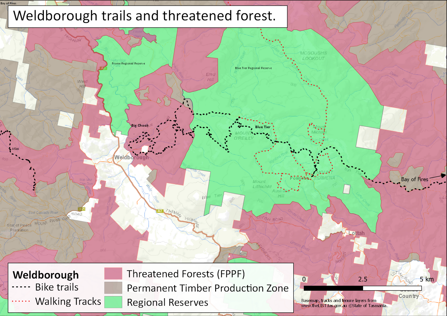Threatened forests and trails Weldborough