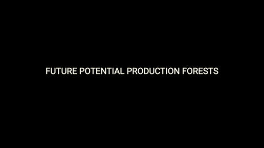Future Potential Production Forests
