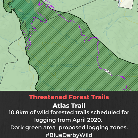 Threatened forests Atlas Trail.