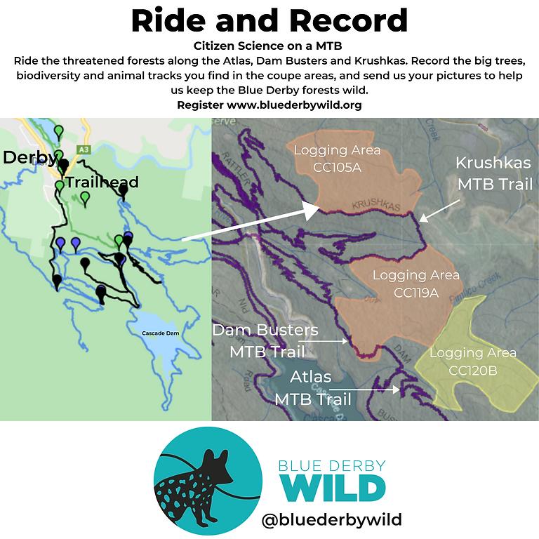 Ride, record & recannoiter