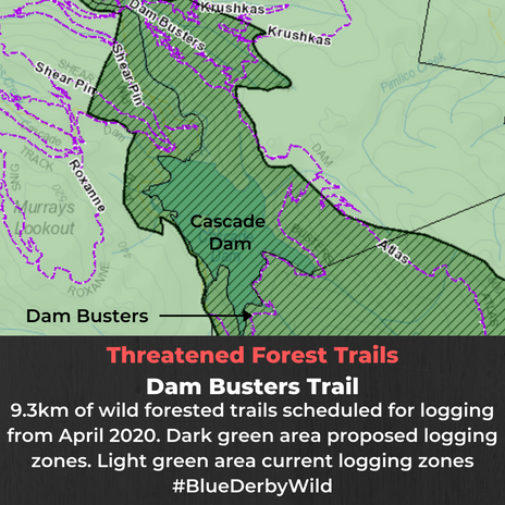 Threatened forests Dam Busters.png