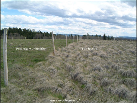 Targeted Grazing: The Future of Rangeland Management?