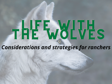 Life with the Wolves