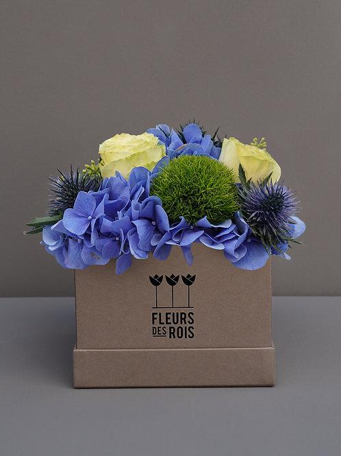 Boîte à Fleurs Le Rhin