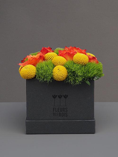 Boîte à Fleurs Napoléon