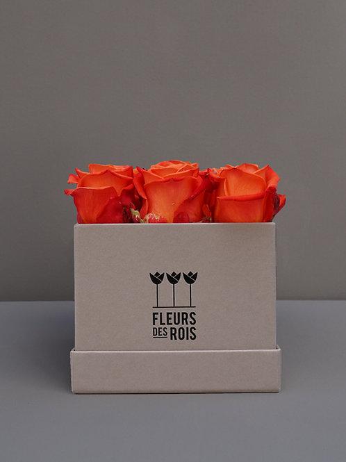 Boîte à Fleurs Roses Orange