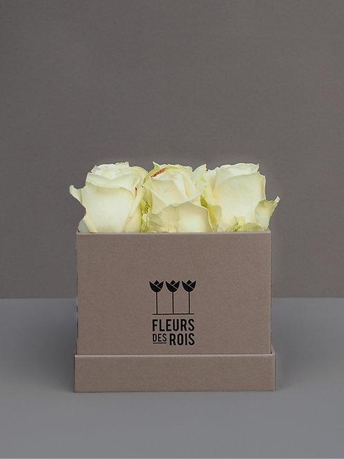 Boîte d'Amour White Avalanche