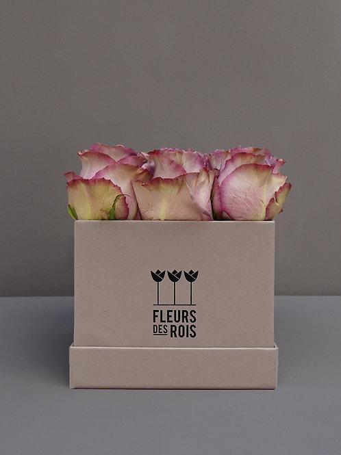 Boîte à Fleurs Roses Alt Rosa
