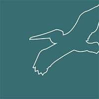 PelicanLogo2 (4).png