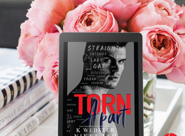 TORN APART - REVIEW - Nikki Ash & K. Webster