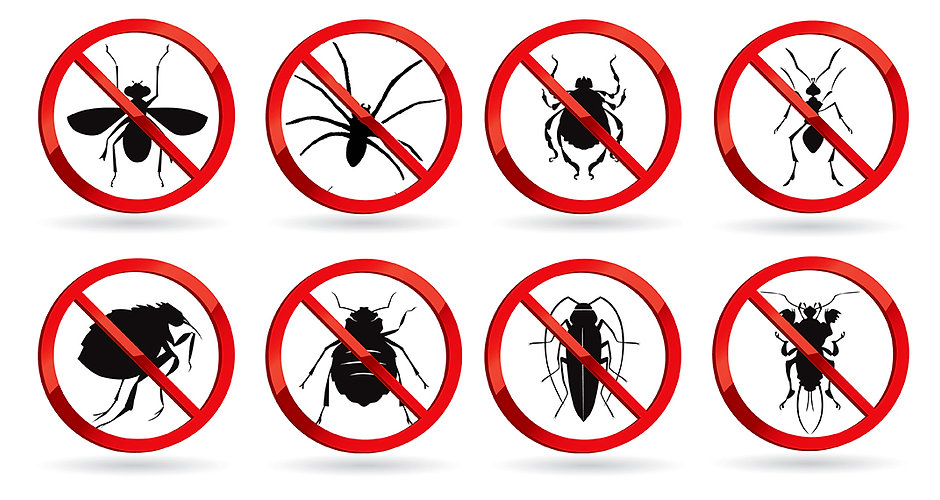 Express-Pest-Control-Final-Image-200dpi.