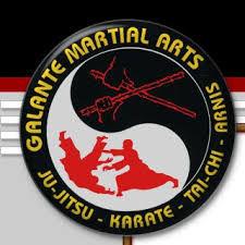 Galante Martial Arts.jpg