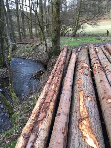 L'exploitation du bois, une activité importante.