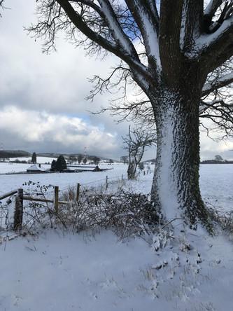 L'hiver, de magnifiques expériences.